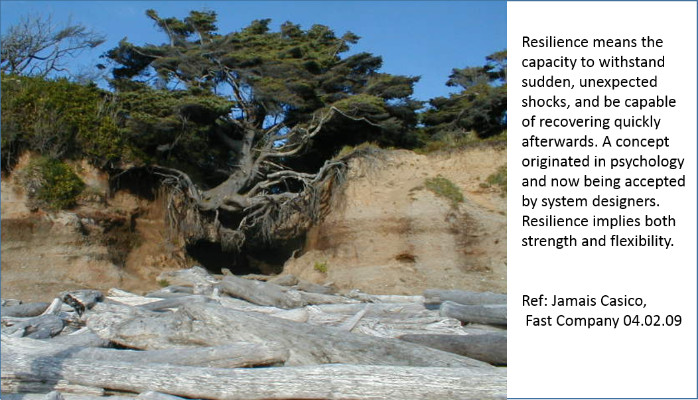 Design for Resiliency